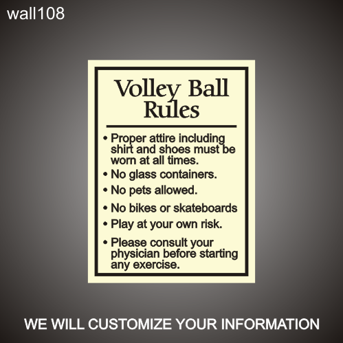 Volley Ball Rules 18in x 24in