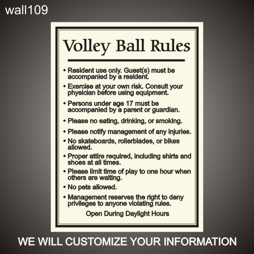 Volley Ball Rules 24in x 36in